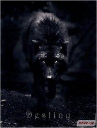 Пёс Чёрный, 29 января 1992, Омск, id30325273